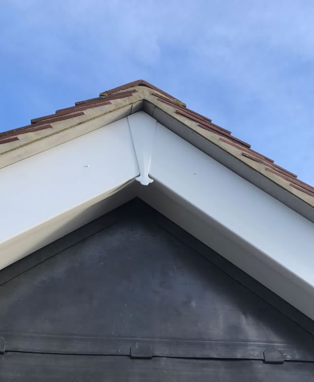 Fascia board replacements Camberley